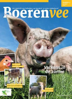 Boerenvee cover